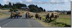Äthiopien1215