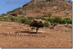 Äthiopien2284