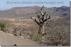 Äthiopien2385