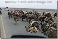 Äthiopien2541
