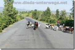 Äthiopien918
